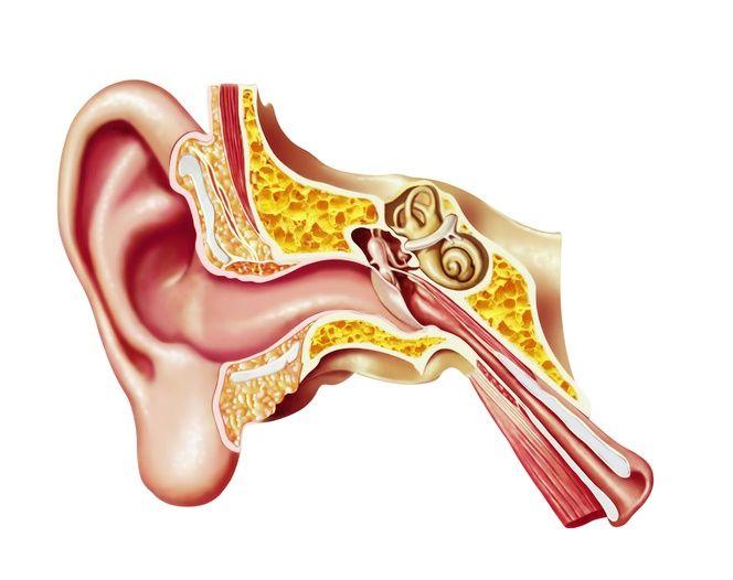 How You Hear